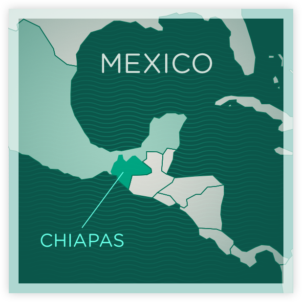 ndg-mexico-map